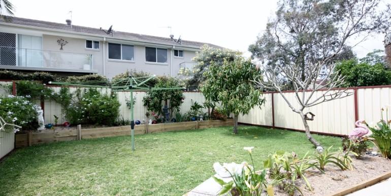 Back yard1